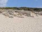 Isola San Pietro La Caletta Spiaggia Spalmatore 7